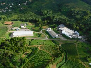 Vue aérienne de l'usine Royal